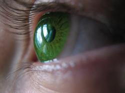 kleur ogen amber